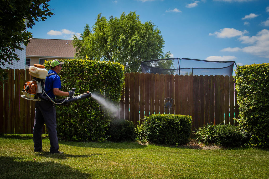 Mosquito Control with Fogger